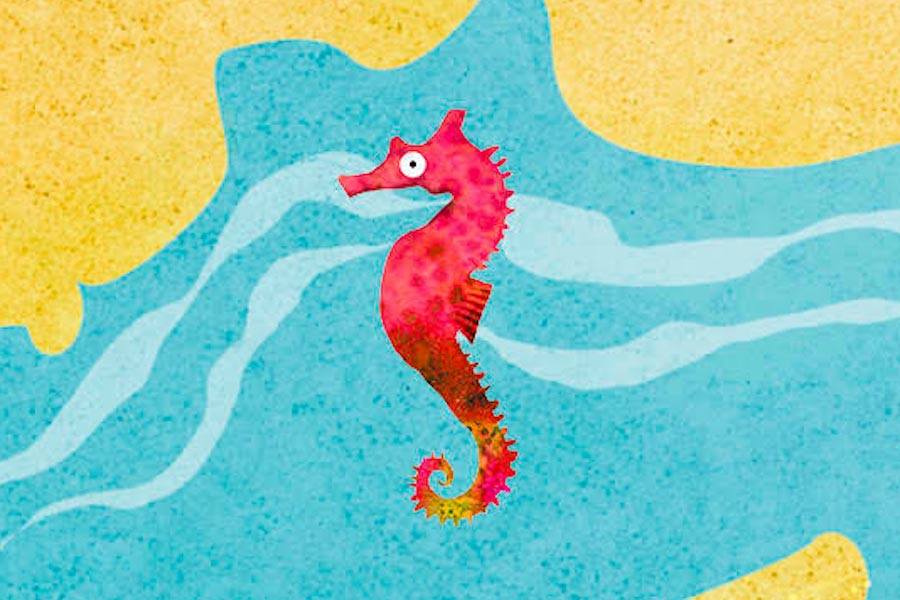 Do you know where seahorses swim?